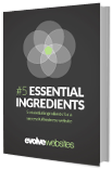 5 Essential Website Ingredients
