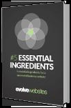 5 Essential Website Ingredients