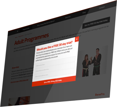 Martial Art World (Andover) Website - Free 30 Day Trial