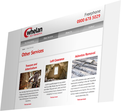 Whelan Pest Prevention (Southampton) Website - Other Services