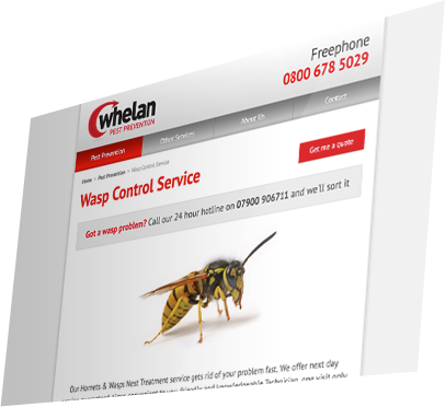 Whelan Pest Prevention (Southampton) Website - Service Detail