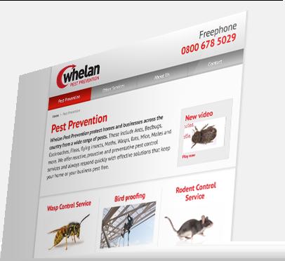 Whelan Pest Prevention (Southampton) Website - Services